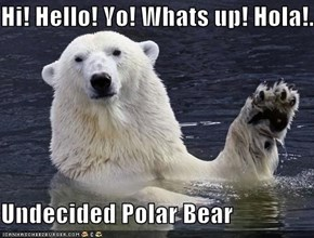 Hi! Hello! Yo! Whats up! Hola!..  Undecided Polar Bear