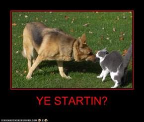 YE STARTIN?