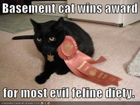 Basement cat wins award    for most evil feline diety.