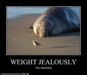 WEIGHT JEALOUSLY