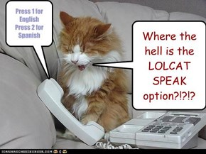 Where the hell is the LOLCAT SPEAK option?!?!?