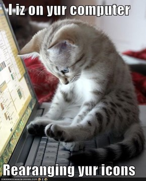 I iz on yur computer  Rearanging yur icons