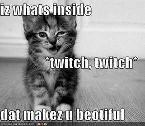 iz whats inside *twitch, twitch* dat makez u beotiful
