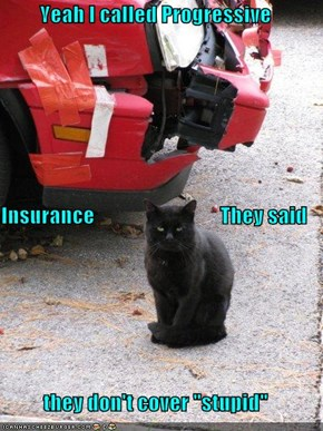 "Yeah I called Progressive  Insurance                              They said  they don't cover ""stupid"""