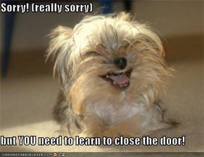Sorry! (really sorry)  but YOU need to learn to close the door!