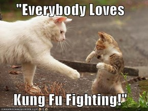 """Everybody Loves  Kung Fu Fighting!"""