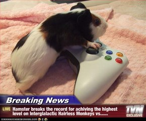 Breaking News - Hamster breaks the record for achiving the highest level on Interglalactic Hairless Monkeys vs......