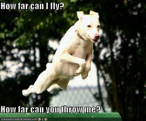 How far can I fly?