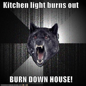Kitchen light burns out  BURN DOWN HOUSE!
