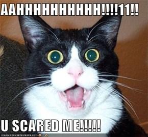 AAHHHHHHHHHH!!!!11!!  U SCARED ME!!!!!