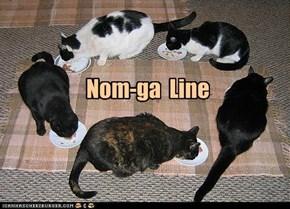 Konga line?  NAWT !
