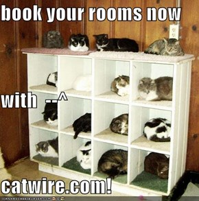 book your rooms now  with  --^ catwire.com!