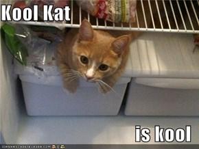 Kool Kat  is kool