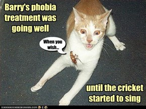 Barry's phobia treatment
