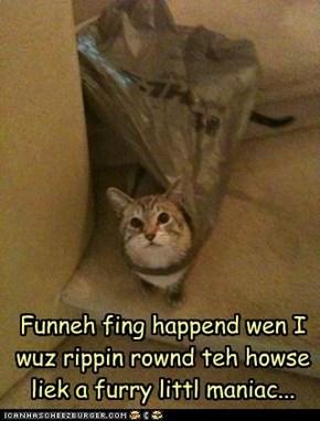 Funneh fing happend wen I wuz rippin rownd teh howse liek a furry littl maniac...