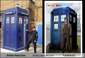 British Police Box Totally Looks Like T.A.R.D.I.S.