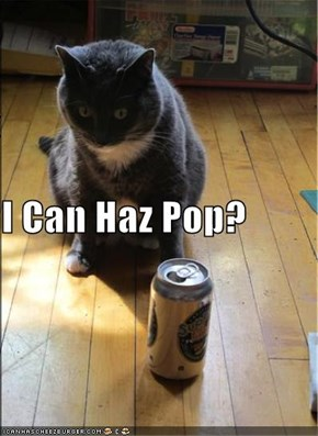 I Can Haz Pop?