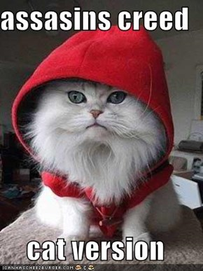 assasins creed  cat version