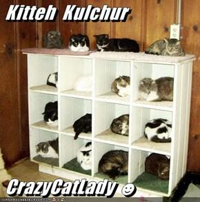 Kitteh  Kulchur   CrazyCatLady ☻
