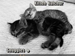 Kitteh  Kulchur         Snuggles ☻