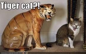 Tiger cat?!
