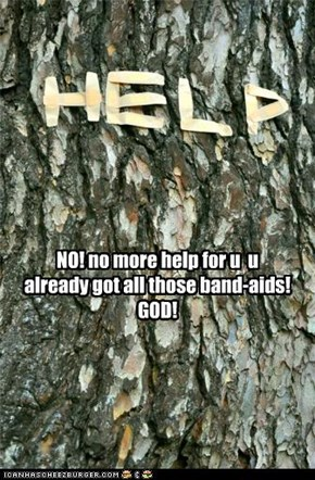NO! no more help for u  u already got all those band-aids! GOD!