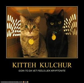 KITTEH  KULCHUR