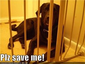 Plz save me!