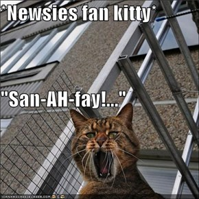 "*Newsies fan kitty* ""San-AH-fay!..."""
