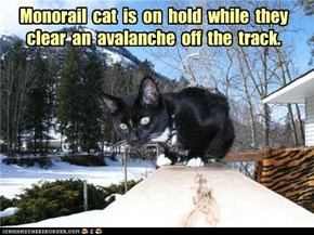 Monorail  cat  is  on  hold  while  they  clear  an  avalanche  off  the  track.