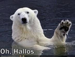 Oh, Hallos
