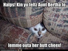 Halps! Kin yu tellz Aunt Bertha to