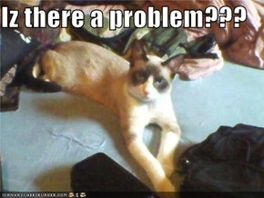 Iz there a problem???