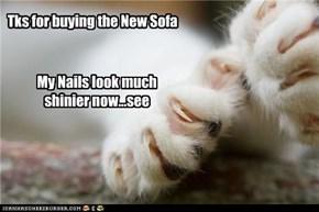 Kitteh Manicure