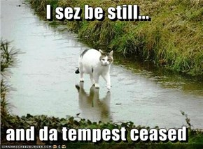 I sez be still...  and da tempest ceased