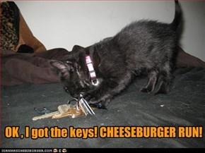 C-H-double-E-S-E, cheese(burger) run!