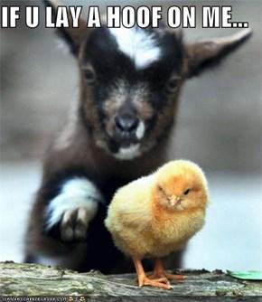 IF U LAY A HOOF ON ME...