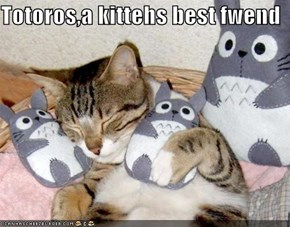 Totoros,a kittehs best fwend
