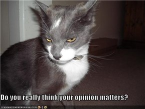 Do you really think your opinion matters?