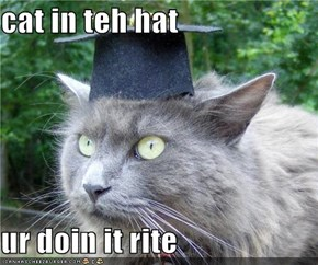 cat in teh hat  ur doin it rite
