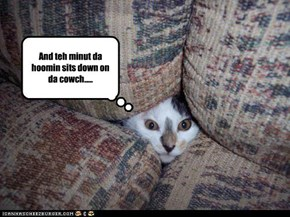 And teh minut da hoomin sits down on da cowch.....