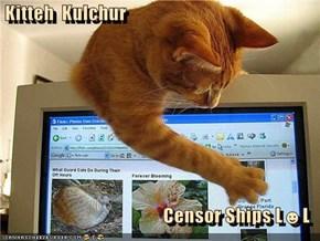 Kitteh  Kulchur   Censor Ships L☻L