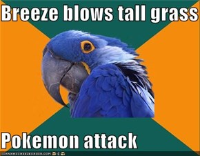 Paranoid Parrot: Cue Battle Music
