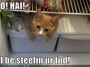 O! HAI!  I be steelin ur fud!