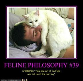 FELINE PHILOSOPHY #39