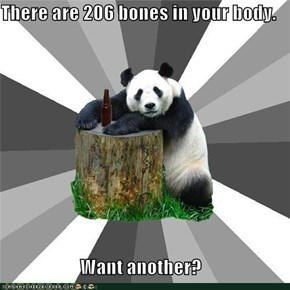 Pickup Line Panda: The Hip Bone's Connected to the...