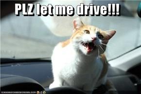 PLZ let me drive!!!