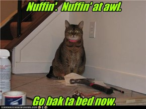Nuffin'.  Nuffin' at awl.        Go bak ta bed now.