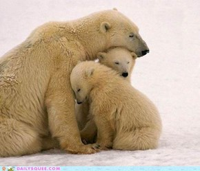 The Whole Family's Bearly Awake