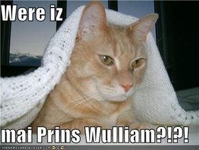Were iz  mai Prins Wulliam?!?!